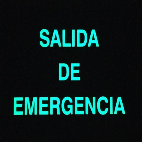 Salida de Emergencia Foto luminiscente