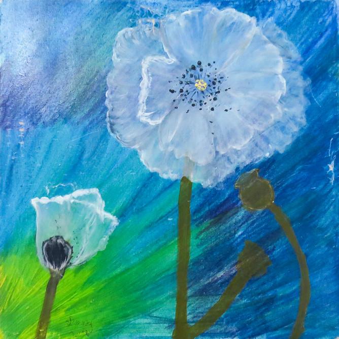 """Mi flor"""