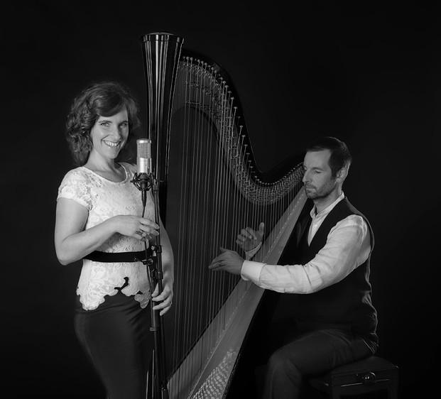 HarpVoc Duo sw