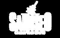 logo bianco Saidiseo (R).png