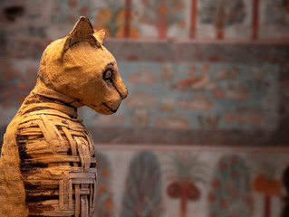 古代エジプトのミイラの作り方