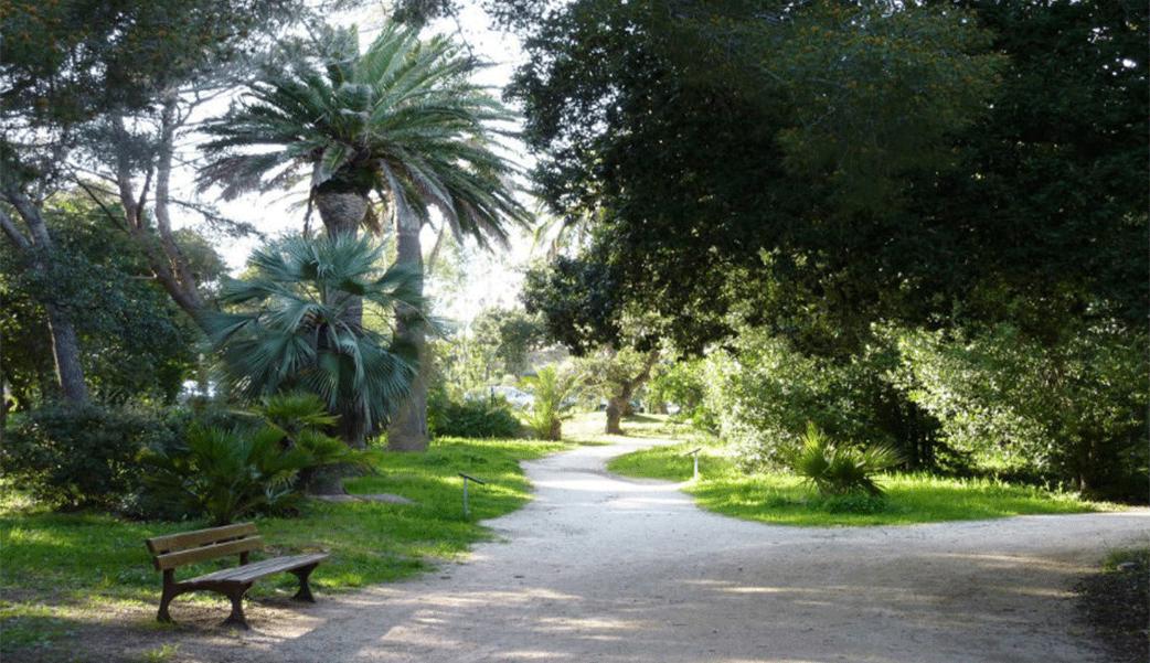 le parc Areca