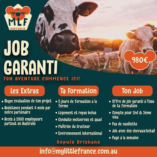 Job garanti