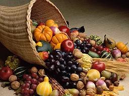 Reap Your Spiritual Harvest