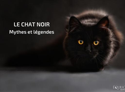 Le chat noir, mythes et légendes.
