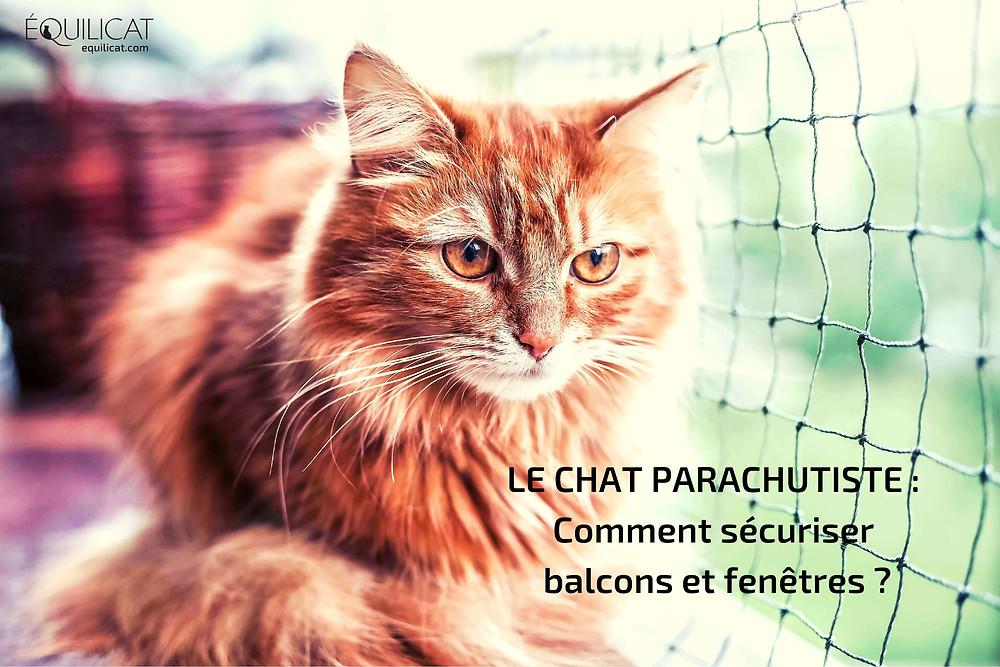 syndrome chat parachutiste sécuriser fenêtre balcon