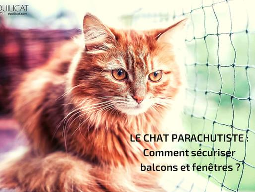 """Le syndrome du chat """"parachutiste"""", comment sécuriser balcons et fenêtres ?"""
