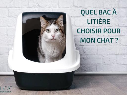 Quel BAC à litière choisir pour mon chat ?