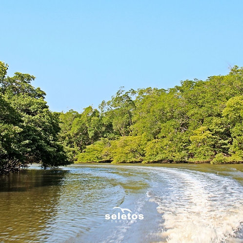 Passeio de barco e dia livre no Estuário do Peixe-Boi