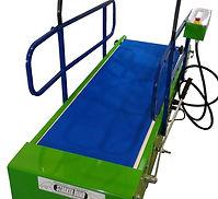 Dog's treadmill