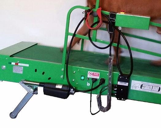 Sollevamento Elettrico per Tapis Roulant SH