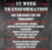 12 week transf flyer.png