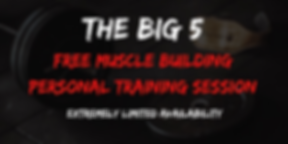 the big 5.png