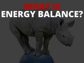 What Is Energy Balance?