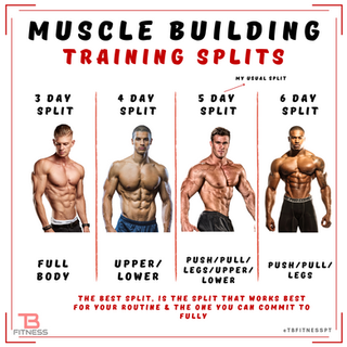 What is the BEST workout routine to build muscle?
