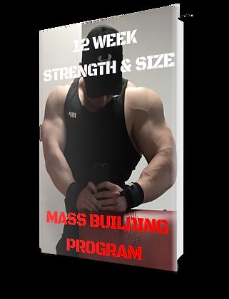 12 Week Mass Building Program