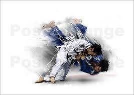 CJJF-Budo Judo kata, technische en examentraining.