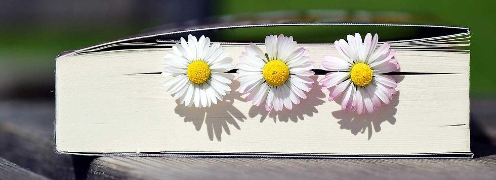 book-web_2319957_1920.jpg