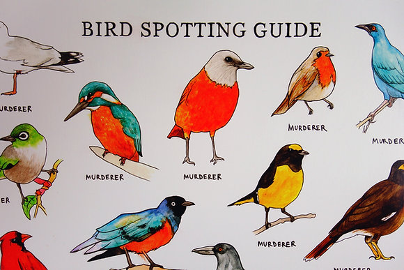Bird Spotting Guide A2 Poster