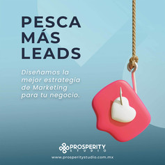 Prosperity-ADD-05WEB.jpg
