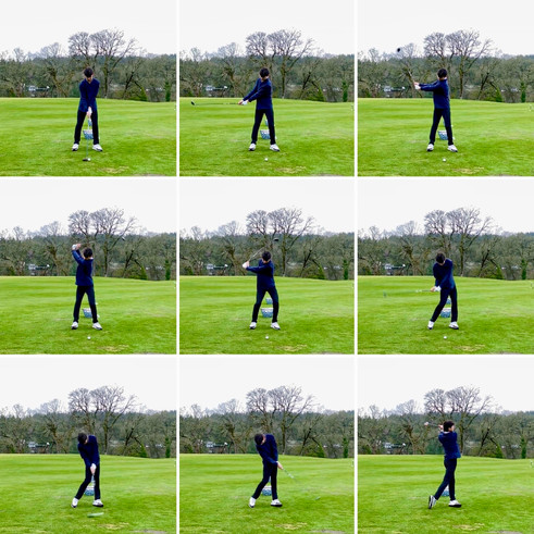 3 Wood Face-On December 2020