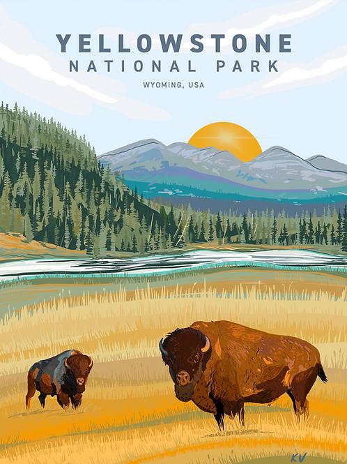 Yellowstone National Park Print/Postcard