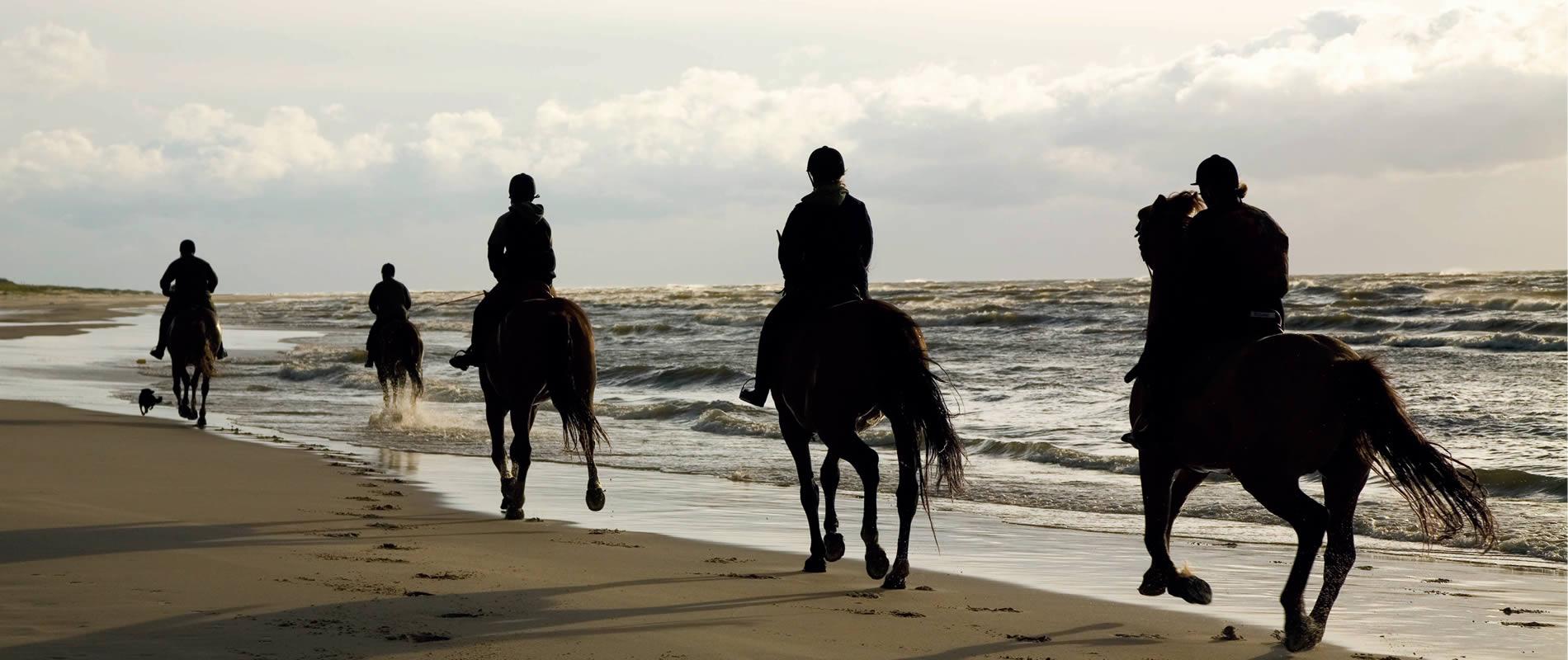 Riding - Puglia