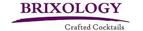Brixology Logo