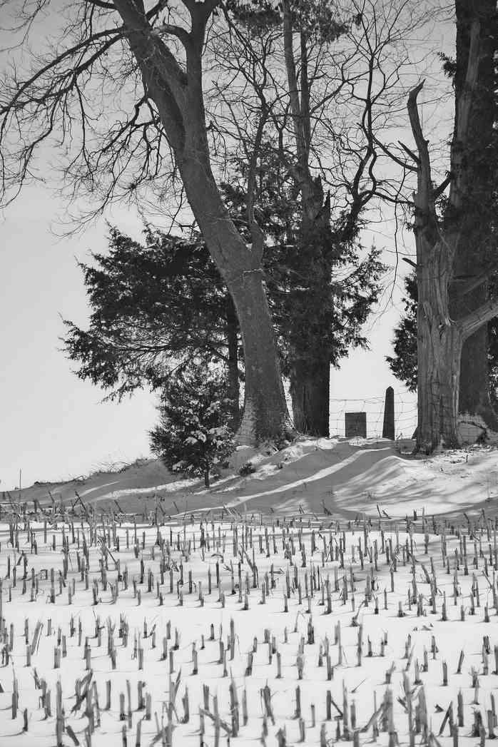 Graveyard in a Field