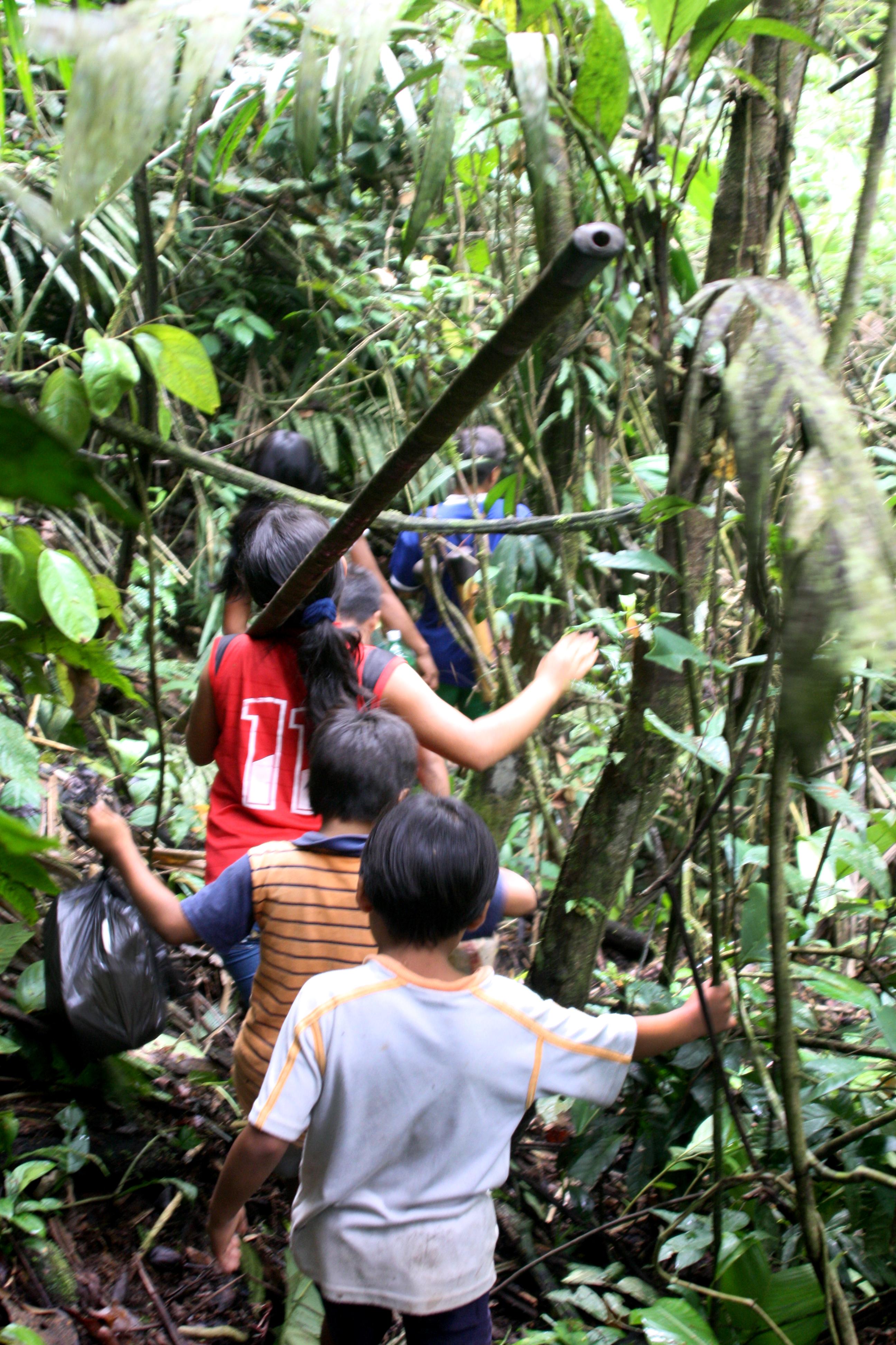 Waorani forest trip, Ecuador 2010