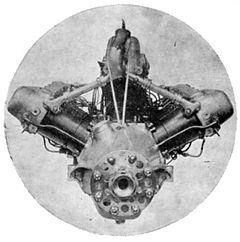 napierlion-1925-schneider.jpg