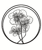 OXALIS logo isolated high res.jpg