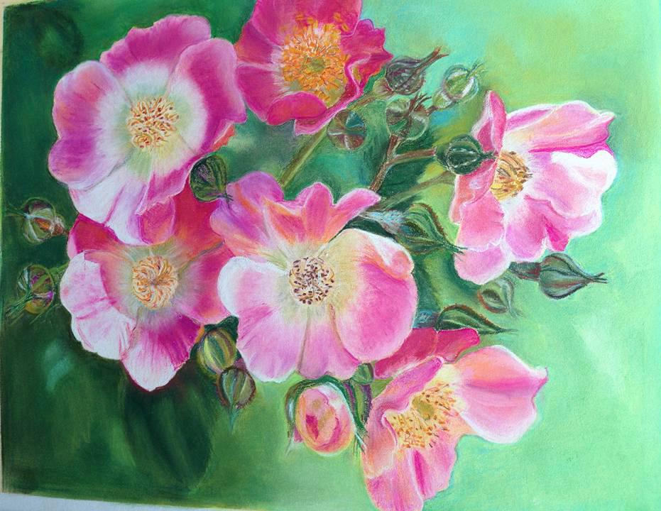 1éres roses