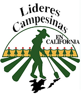 lideres logo.png