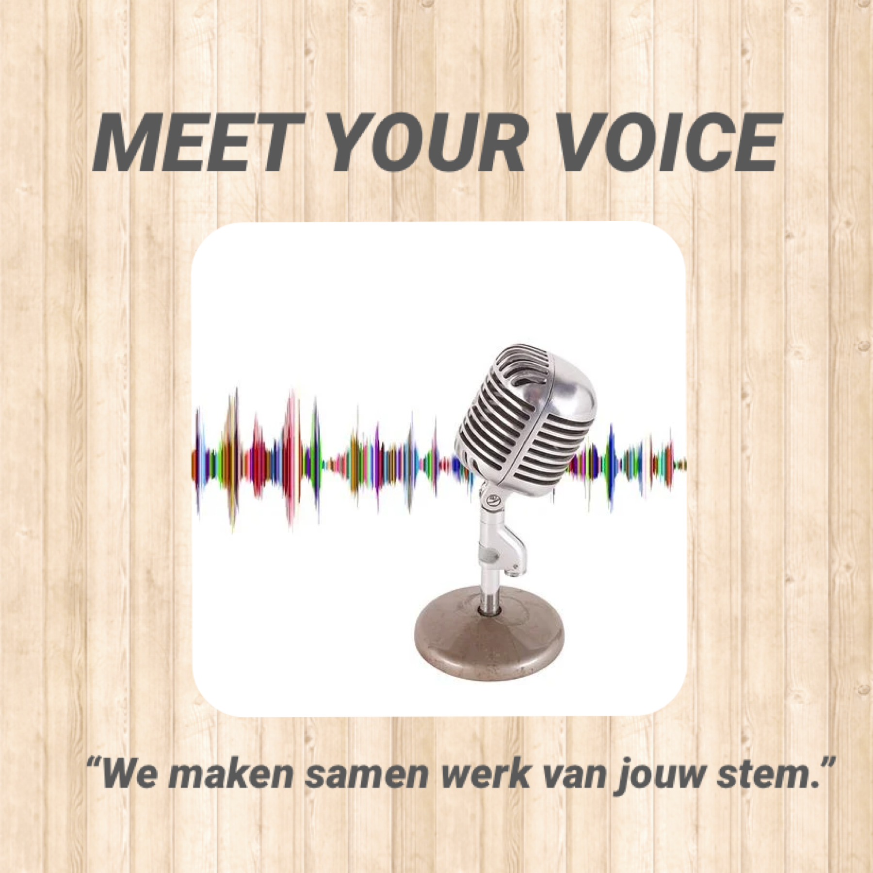 Meet Your Voice Individuele training