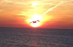 ondergaande zon scheveningen wekende ste