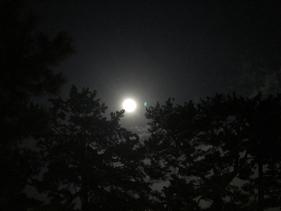 menu_moon_0024