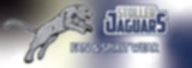 Stoller-Jaguar-logo-for-dark-background.