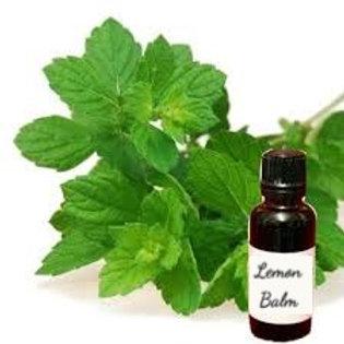 Lemon Balm Herbal Tincture