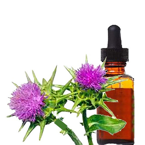 St Mary's (Milk) Thistle Herbal Tincture