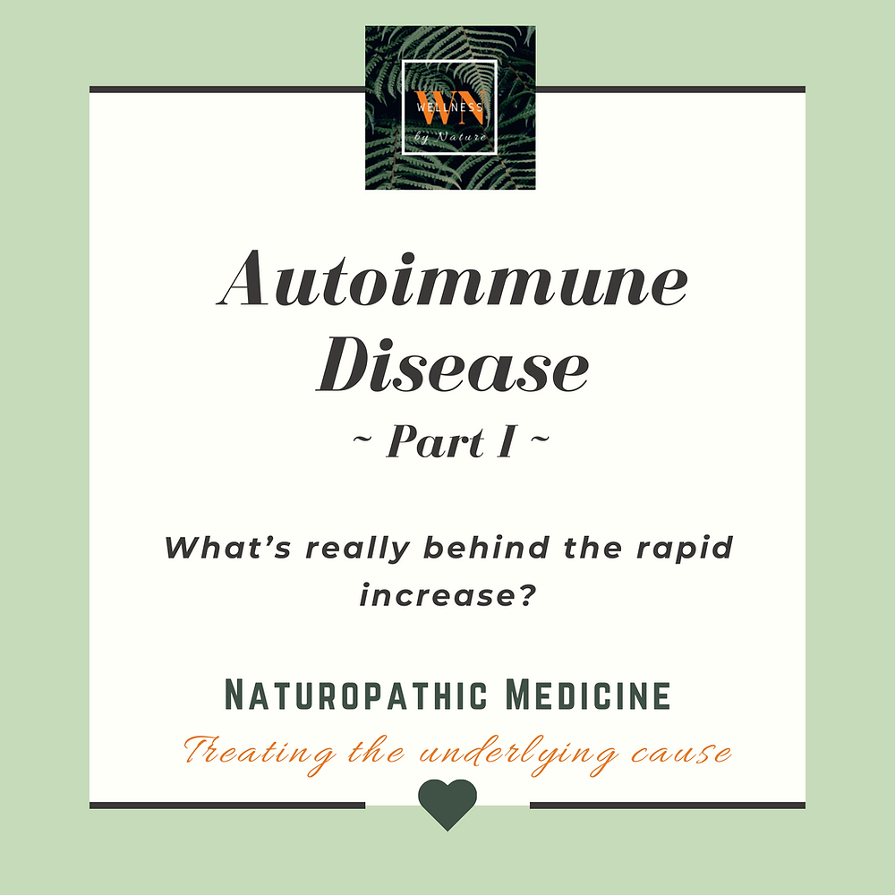 What is really causing the rapid increase in autoimmunity?