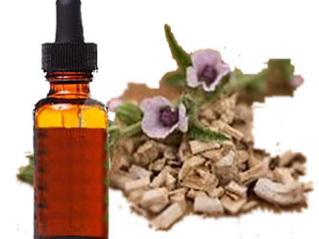Marshmallow Herbal Tincture