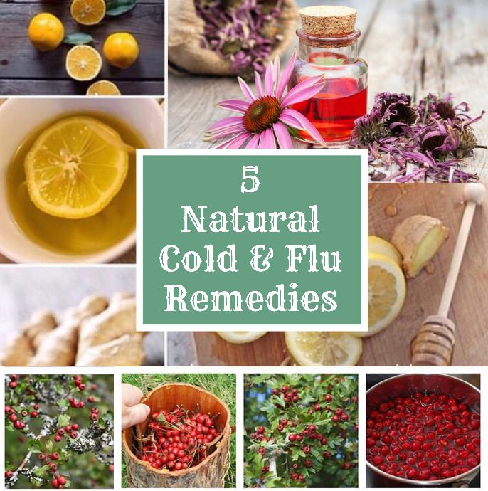 5 of the best natural treatments for colds & flu