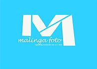 logo2017_edited.jpg