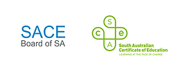 sace_logo_before_after.png