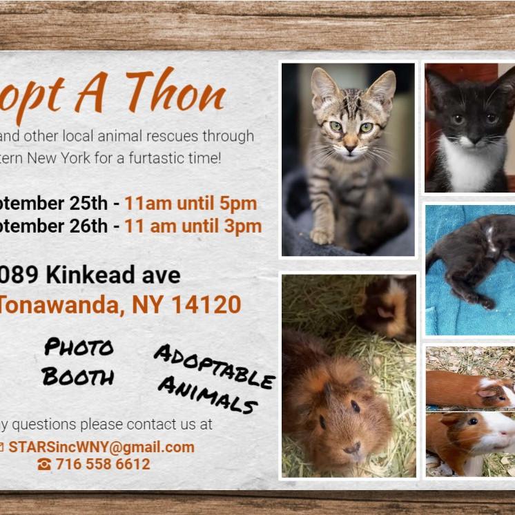 2nd Annual Adopt A Thon