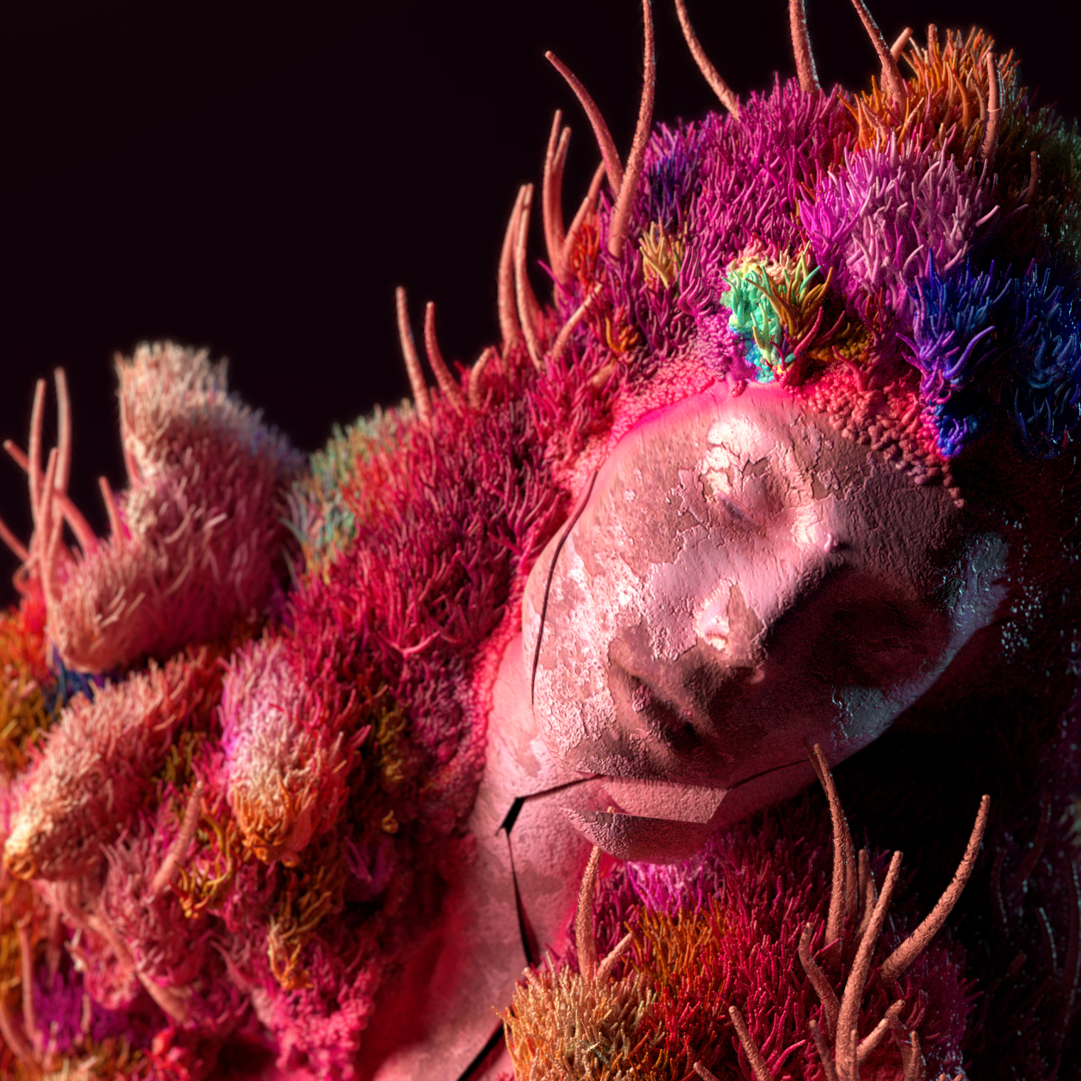 da coral pink_face crop