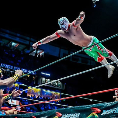 Lucha Libre and a Mexican Dinner