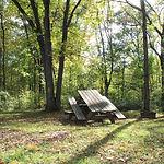 Chippewa Campsite_FromCRM6282.JPG