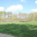Huron Campsite_FromCRM6282.JPG